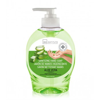 HAND WASH SANITZER 250 ml ALOE VERA