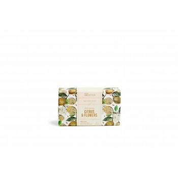 IDC Fruity Soap Citrus & Flowers display 6 CE